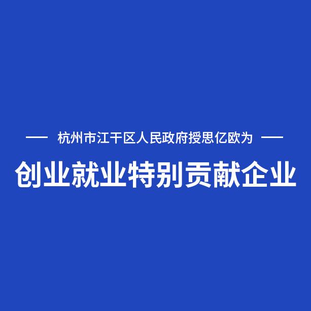 """杭州市江干区人民政府授予思亿欧""""创业就业特别贡献企业""""荣誉称号"""